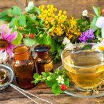 Как победить болезнь без последствий: природная альтернатива антибиотикам
