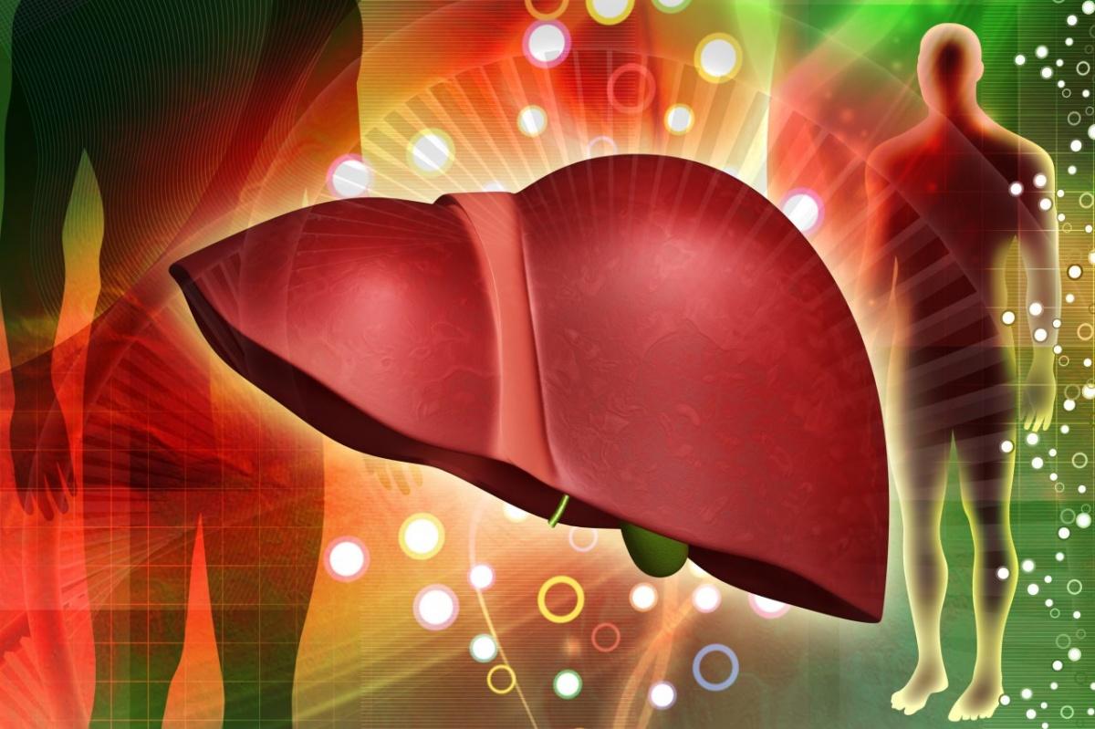 Как лечить жировой гепатоз печени народными средствами