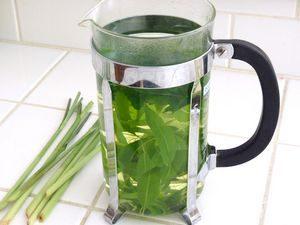 Дуденит мятный чай