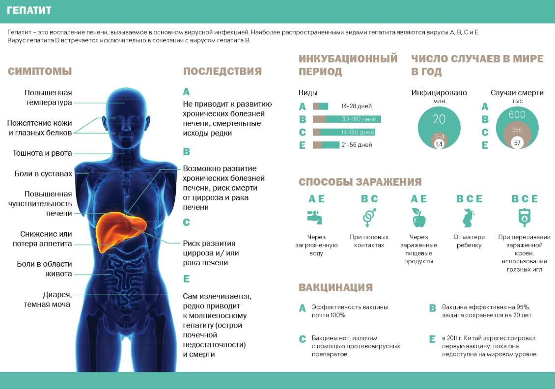 Гепатит первые симптомы таблица
