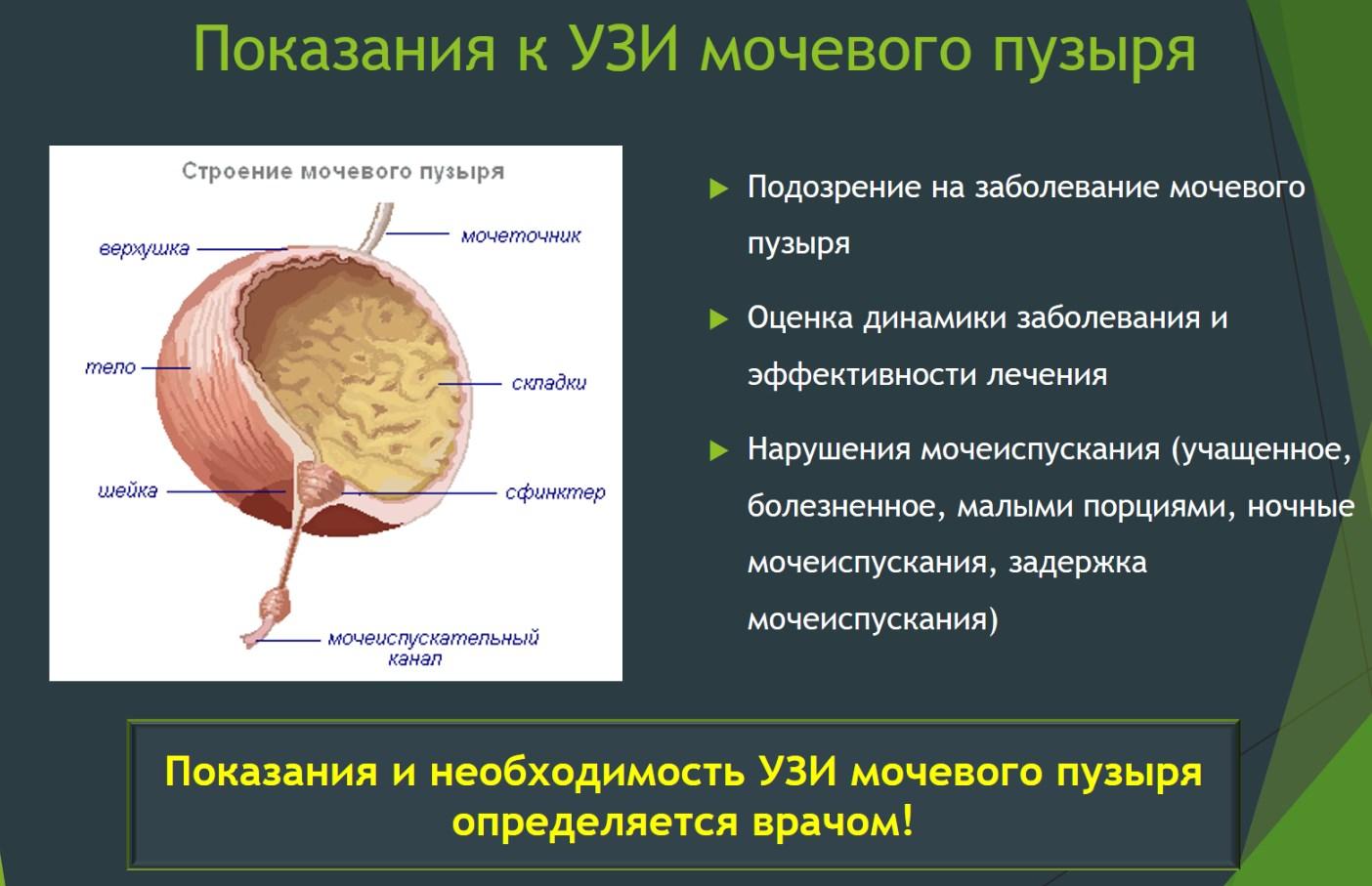 Показания УЗИ мочевого пузыря