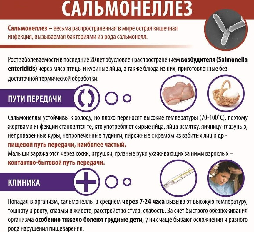 Симптомы сальмонеллеза