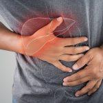 Гепарео – свойства препарата для печени, развод или нет