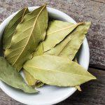 Польза и вред отвара из листьев лаврового листа