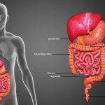 Колит: источники воспаления слизистой оболочки кишечника